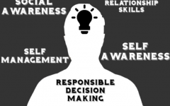 The featured image above displays the different ways that SEL is beneficial. SEL can help improve students attitude towards school, and can reduce depression and stress among students.
