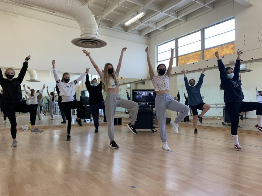 The dance team in the studio- some in person and others virtually- pose in the middle of a dance step while Schreifels (left) leads them.